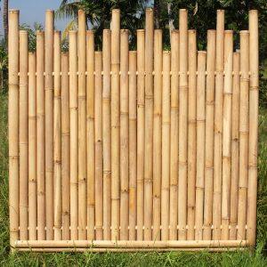 Bambuszaun Abang- gestuft- Bambuszentrum Pfalz