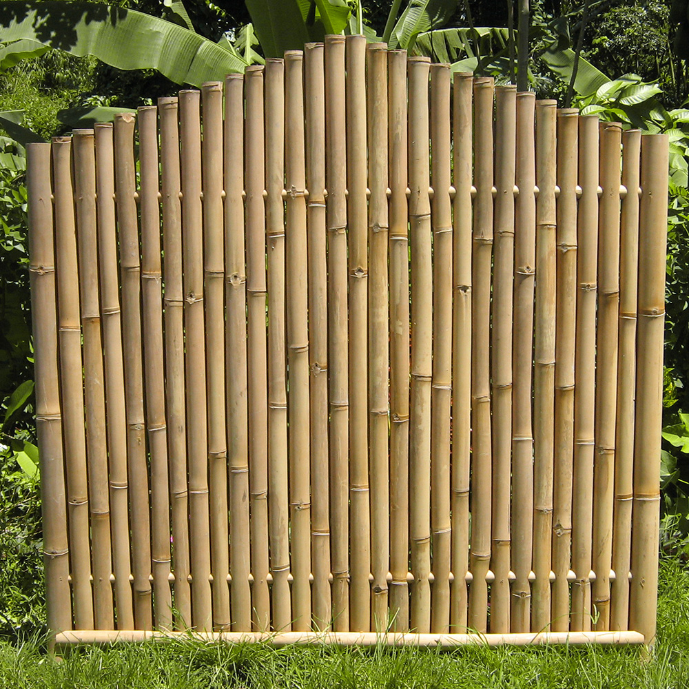 "bambuszaun ""abang"" - bambuszentrum pfalz ""shangrila"""