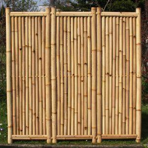 Bambuszaun Belega - dreiteilig - Bambuszentrum Pfalz